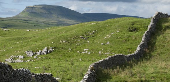 A view of Pen-y-ghent