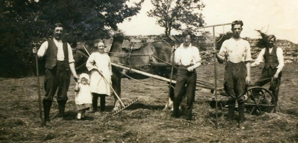Haymaking involved the whole family